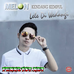 Various Artists - Melon Kendang Kempul Lele Diwedangi (Full Album 2016)